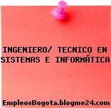 INGENIERO/ TECNICO EN SISTEMAS E INFORMÁTICA