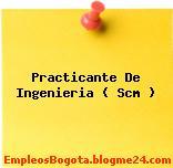 Practicante De Ingenieria ( Scm )
