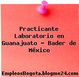 Practicante Laboratorio en Guanajuato – Bader de México