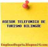 ASESOR TELEFONICO DE TURISMO BILINGÜE