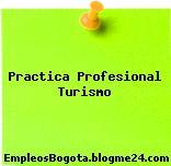 Practica Profesional Turismo