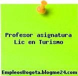 Profesor asignatura Lic en Turismo