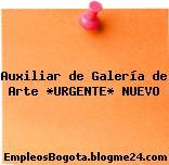 Auxiliar de Galería de Arte *URGENTE* NUEVO
