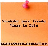 Vendedor Para Tienda – Plaza La Isla