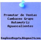 Promotor de Ventas Cambaceo Grupo Automotriz Aguascalientes