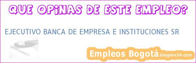 EJECUTIVO BANCA DE EMPRESA E INSTITUCIONES SR