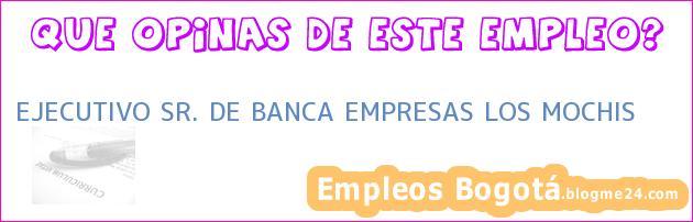 EJECUTIVO SR. DE BANCA EMPRESAS LOS MOCHIS