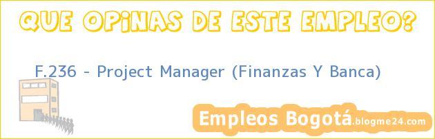 F.236 – Project Manager (Finanzas Y Banca)