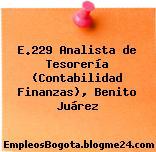 E.229 Analista de Tesorería (Contabilidad Finanzas), Benito Juárez