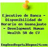 Ejecutivo de Banca – Disponibilidad de Horario en Guanajuato – Development Human Wealth SA de CV