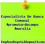 Especialista De Banca Comunal Promotordecampo Morelia