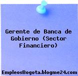 Gerente de Banca de Gobierno (Sector Financiero)