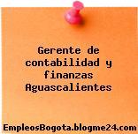 Gerente de contabilidad y finanzas Aguascalientes