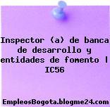 Inspector (a) de banca de desarrollo y entidades de fomento | IC56