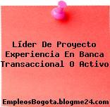 Líder De Proyecto Experiencia En Banca Transaccional O Activo