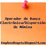 Operador de Banca Electrónica/Dispersión de Nómina