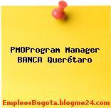 PMOProgram Manager BANCA Querétaro