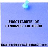 PRACTICANTE DE FINANZAS CULIACÁN