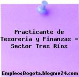 Practicante de Tesoreria y Finanzas – Sector Tres Ríos