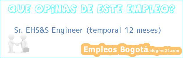 Sr. EHS&S Engineer (temporal 12 meses)