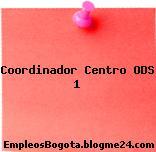 Coordinador Centro ODS 1