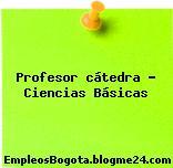 Profesor cátedra – Ciencias Básicas