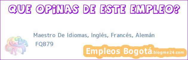 Maestro De Idiomas, Inglés, Francés, Alemán | FQ879