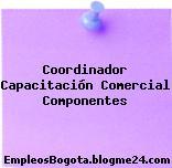Coordinador Capacitación Comercial Componentes
