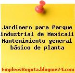 Jardinero para Parque industrial de Mexicali Mantenimiento general básico de planta