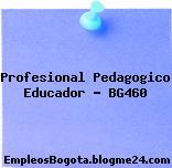 Profesional Pedagogico Educador – BG460