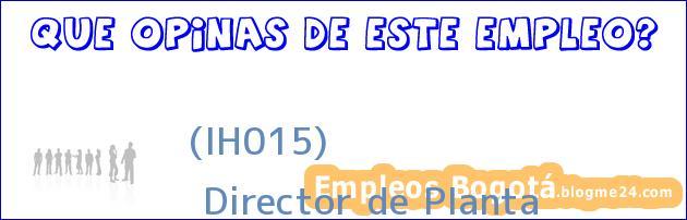 (IH015) | Director de Planta