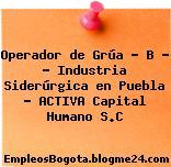"""Operador de Grúa """" B """" – Industria Siderúrgica en Puebla – ACTIVA Capital Humano S.C"""