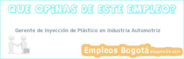 Gerente de Inyección de Plástico en Industria Automotriz