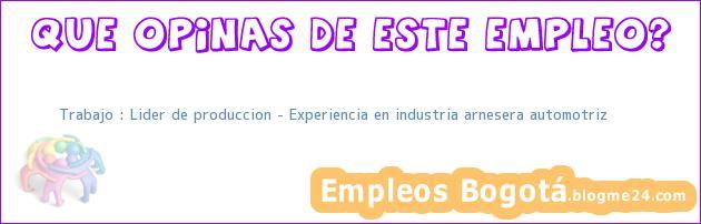 Trabajo : Lider de produccion – Experiencia en industria arnesera automotriz