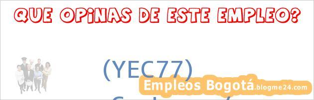 (YEC77) | Costurera/o