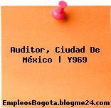 Auditor, Ciudad De México | [Y969]