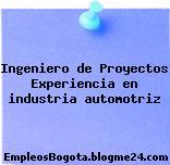 Ingeniero de Proyectos Experiencia en industria automotriz