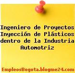 Ingeniero de Proyectos Inyección de Plásticos dentro de la Industria Automotriz
