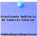 Practicante Auditoria De Comercio Exterior