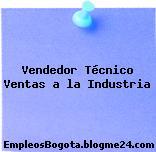 Vendedor Técnico Ventas a la Industria