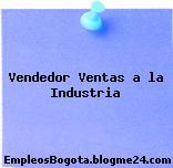 Vendedor Ventas a la Industria