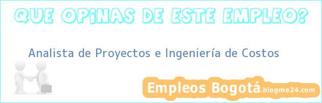 Analista de Proyectos e Ingeniería de Costos