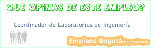 Coordinador de Laboratorios de Ingeniería