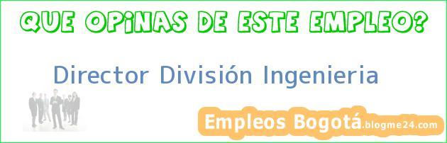 Director División Ingenieria