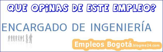 ENCARGADO DE INGENIERÍA