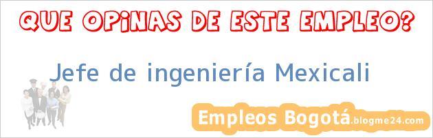 Jefe de ingeniería Mexicali