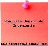 Analista Junior de Ingeniería