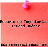 Becario de Ingenierías – Ciudad Juárez