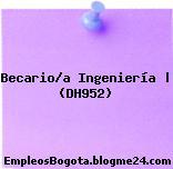 Becario/a Ingeniería | (DH952)