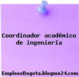 Coordinador académico de ingeniería